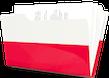 Poola valmisfirma